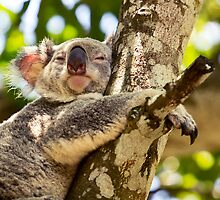 Teaching Us How To Relax by Josie Eldred