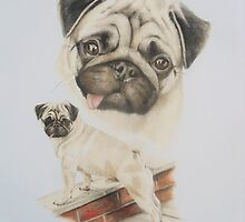 Toddy Pug by Stephanie Greaves