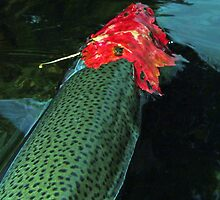 There Is Something Fishy About That Leaf by Brian Pelkey