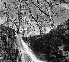 East Gill Force 01 - Nr Keld, Yorkshire Dales by Simon Lupton
