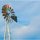 Weather Vane by LocustFurnace