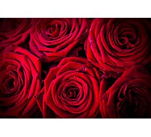 Blooming Lovely Photographic Print
