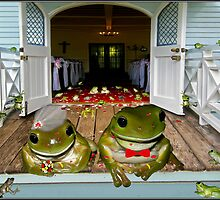 Mr & Mrs Frog's big day by Helenvandy