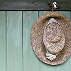 Summer Hat by mispix