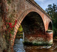 Cross Foxes Bridge by David J Knight