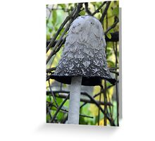Shaggy Ink Cap Bell - Woolston Park Greeting Card