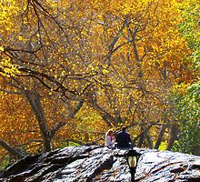 Autumn trees, Central Park - NYC by Alberto  DeJesus