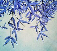 bamboo susurration  by Priska Wettstein
