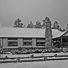 Big Bear Residence by Chet  King