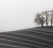 Gallows Hill 02 - Nr Kirkby Stephen, Cumbria by Simon Lupton