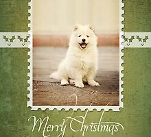 Christmas Card No 1 by FLCV