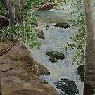 Banias Waterfall by Ilunia Felczer