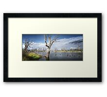 Murray River Scene Framed Print