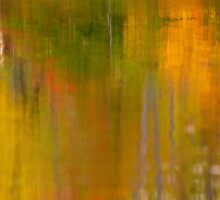 Abstract Autumn  by Gregory Ballos | gregoryballosphoto.com