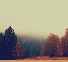 Misty Morning by Liero