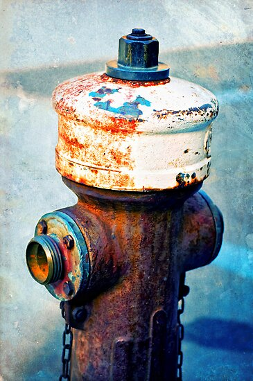 Weathered fire hydrant by Silvia Ganora