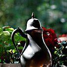 The Teapot by hs-photography