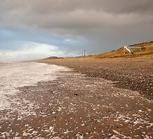 Seascale #1 by Andy Stafford