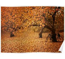 For Two - Autumn - Central Park - New York City Poster
