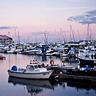 Torquay moorings by Lissywitch