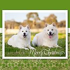 Christmas Card No 3 by FLCV