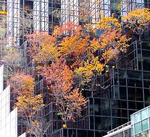 Autumn Tower, New York City  by Alberto  DeJesus
