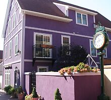 Purple Building - Stoudtburg Village, PA by searchlight