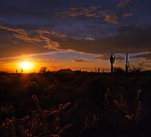 A Southwest Sunrise  by Saija  Lehtonen