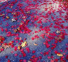 Leaf Sparkle by Deborah Crew-Johnson
