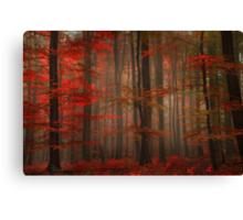 Enchanting Red Canvas Print