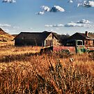 Mildred, Wyoming, USA  by Margaret Metcalfe