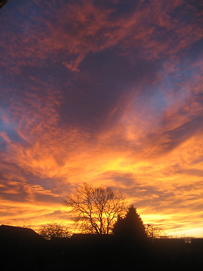 Lincolnshire Sunrise by Rachel Tyrrell