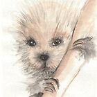 Fuzzy Guy by Karen  Securius