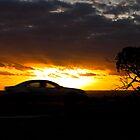 Racing Home by Darren Clarke