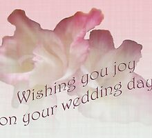 Wedding Wishes Card - Gladioli by MotherNature