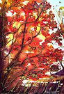 Autumn Song  by © Linda Callaghan