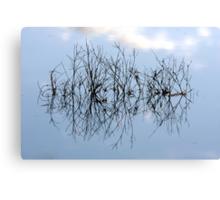 Mirrored sticks Canvas Print