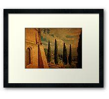 Cypress Family-Pienza, Tuscany Framed Print