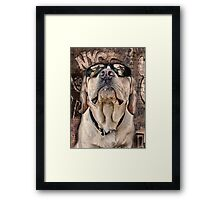 yeah man . . . this is really high Framed Print