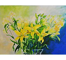 Dorothy's Yellow Lily  Photographic Print
