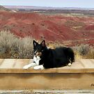 Kali at the Painted Desert by Shiva77