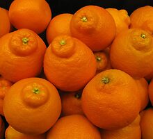 Minneola Oranges by Ginny York