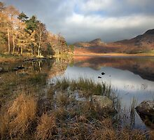 An Autumnal Blea Tarn by SteveMG
