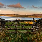 Just A Gate by David J Knight