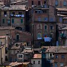The other side of Siena by Javimage