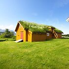 Green Roofs of Norway by SeeOneSoul