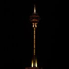 Milad Tower-iPhone by Katayoonphotos