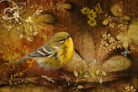 Warbler in Wonderland by Bonnie T.  Barry
