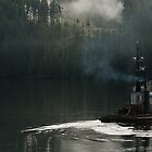 Tug on duty, Port Hardy BC by lgraham