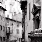 Perugia street view by Peppedam